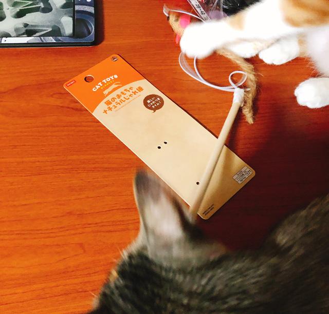 ダイソーの猫のオモチャ