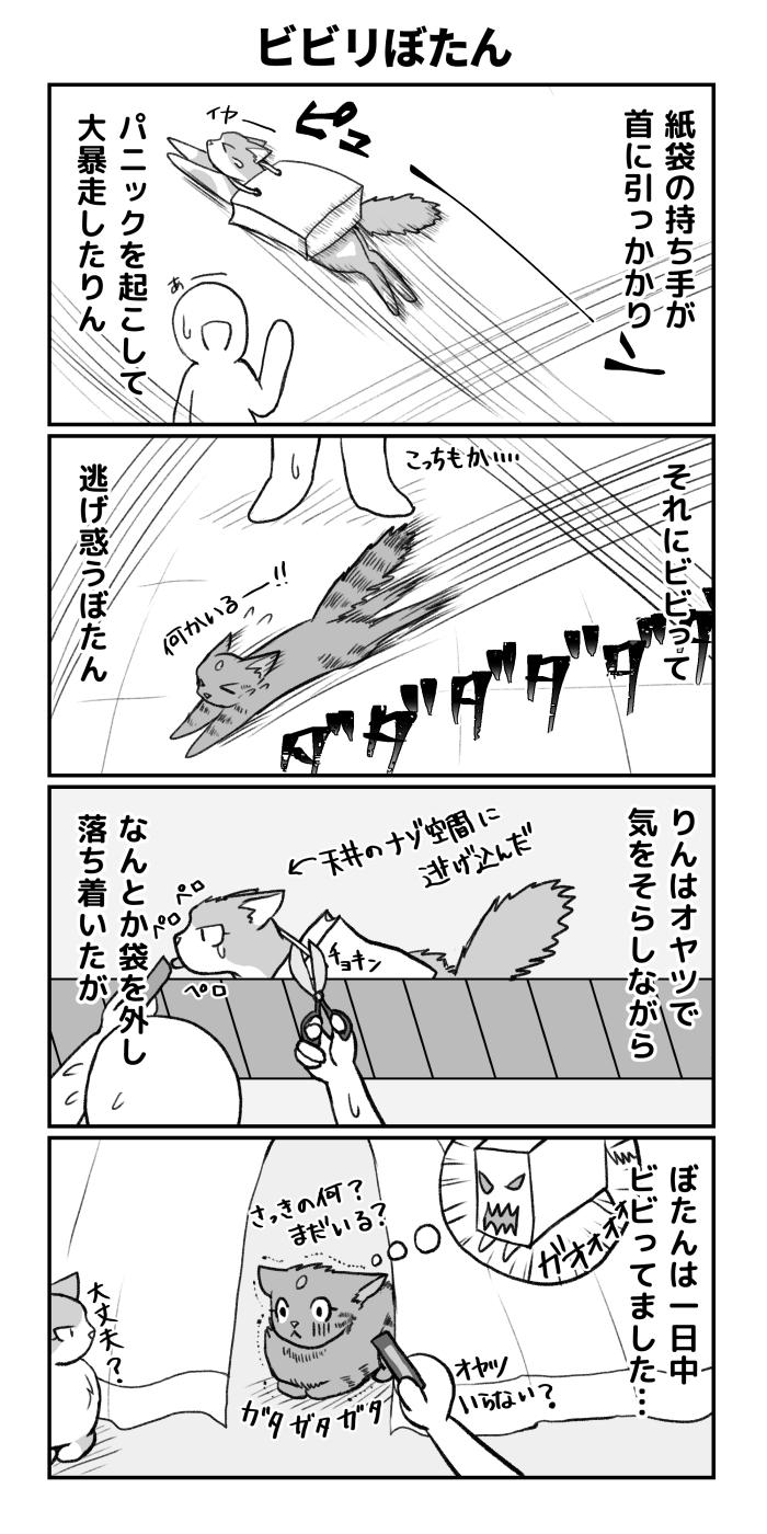 猫の4コマ漫画
