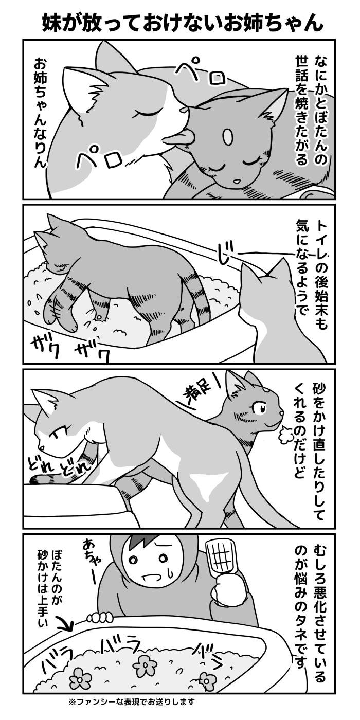 過保護なお姉ちゃん4コマ漫画