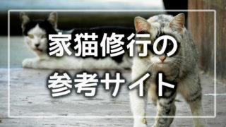 家猫修行のサムネ