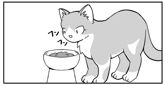 ご飯フンフン