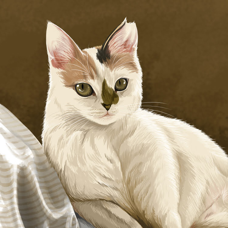リアル猫絵